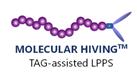 Molecular Hiving
